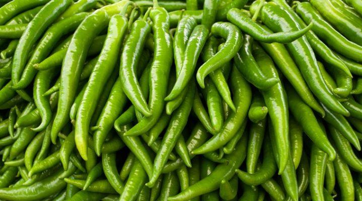 green chilli 759