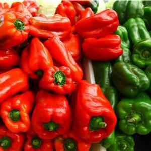 bell pepper 1