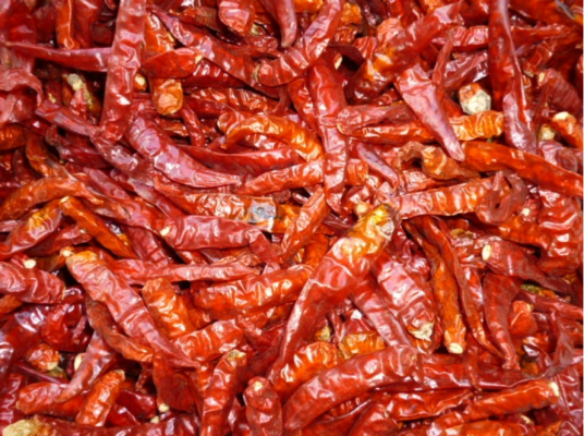 dried chili peppers 3