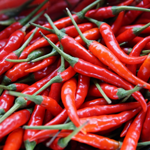 fresh chili pepper VIETNAM 6